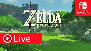 ZELDA BREATH OF THE WILD NINTENDO SWITCH LIVE #31