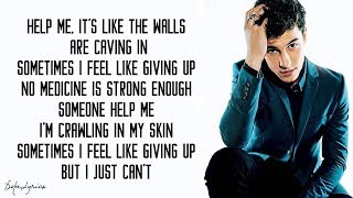 Shawn Mendes   In My Blood (Lyrics)