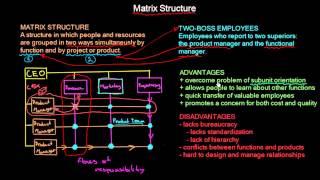 Matrix Organisational Structure   Organisational Design   MeanThat
