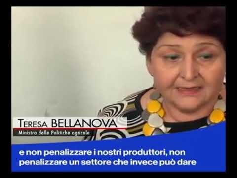 IL MINISTRO TERESA BELLANOVA CONTRARIA ALLA TASSA SU BIBITE ZUCCHERATE E PLASTICA