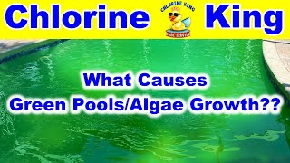What Causes Green Pools & Algae Growth in Swimming Pools? We Can Help Explain - Chlorine King