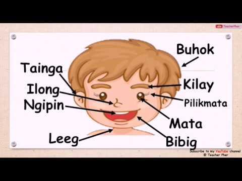Kung paano makakuha ng mga worm sa panahon ng pagbubuntis