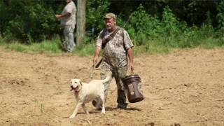 Dove Season - TWRA East TN Outdoors