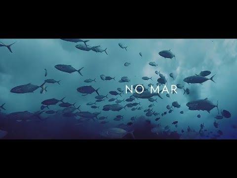 No Mar: Bioma Marinho