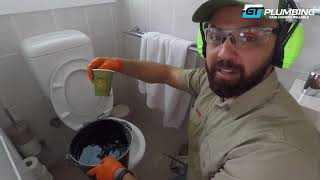 How to clear tree roots without replacing the pipes - GT PLUMBING