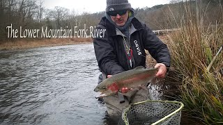 Fly Fishing the Lower Mountain Fork River in Oklahoma for Huge Rainbow Trout!