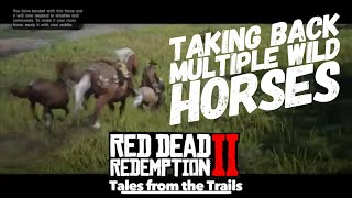 Red Dead Redemption 2: How to take multiple wild horses back to the stables at one time