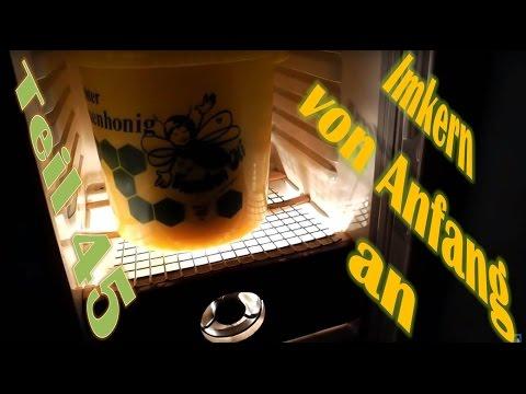 Imkern von Anfang an - Teil 45 - Bau eines Honig Auftauschrank / Brutschrank