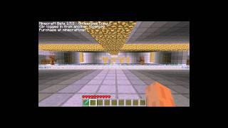 Minecraft-Walka na Arenie