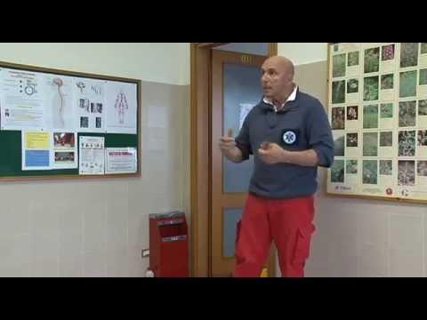 Massaggio vertebre nella regione toracica