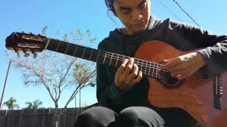 Death of a Strawberry (acoustic guitar cover)