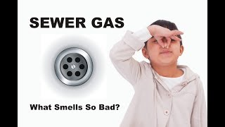 Sewer Gas - What Smells So Bad?