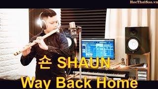 WAY BACK HOME 숀 SHAUN ❤️ TIKTOK VIETNAMESE VERSION REMIX   NHẠC EDM GÂY NGHIỆN ★ MASTER OF FLUTE
