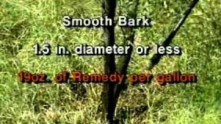 """Brushbuster: How to Beat Mesquite"" - Mesquite Stem Spray Method"