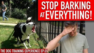 How one can Prepare Your Canine to STOP BARKING at EVERYTHING That Strikes!!