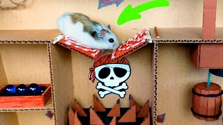 🐹Hamster and Marble Run in the awesome Ship maze for pets in real life