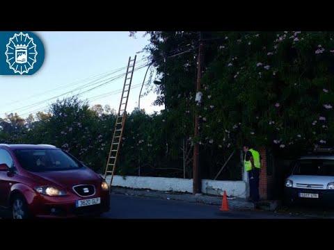 Sorprendidos robando cien metros de cable de comunicaciones en Málaga