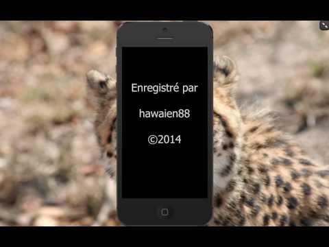 comment configurer localiser mon iphone