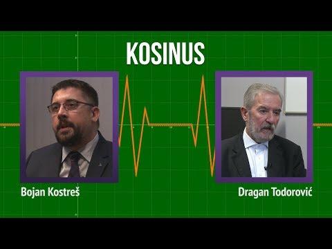 Todorović o Kosovu: Kako da se razgraničite u sopstvenoj državi?