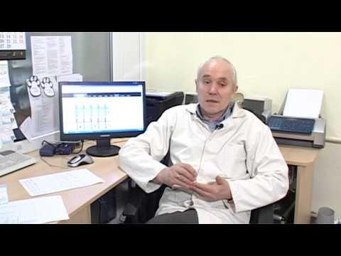 Gira iš runkelių hipertenzijai gydyti
