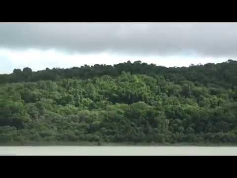 Mayan Jungle Highlights tour – Mexico, Guatemala & Belize