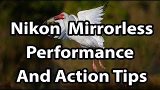 Nikon Mirrorless: Tips For Performance And Action (Z6, Z7, Z50)