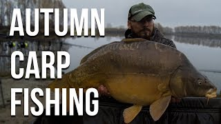 Autumn Carp Fishing - Catching Big Carp