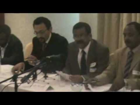 Press conference on doctors strike in Sudan (4)