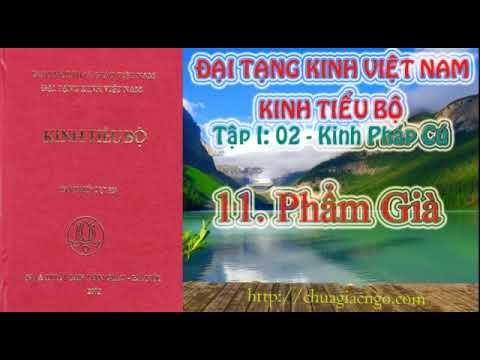 Kinh Tiểu Bộ - 022. Kinh Pháp Cú - 11. Phẩm Già