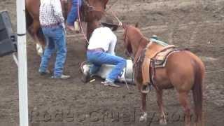 Calf Injured, Ignored At Salinas Rodeo