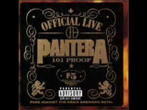 Pantera - Sandblasted Skin