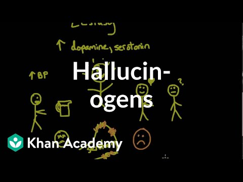 Preparing For Big Conversations Drugs And Alcohol Learning Potential >> Psychoactive Drugs Hallucinogens Video Khan Academy