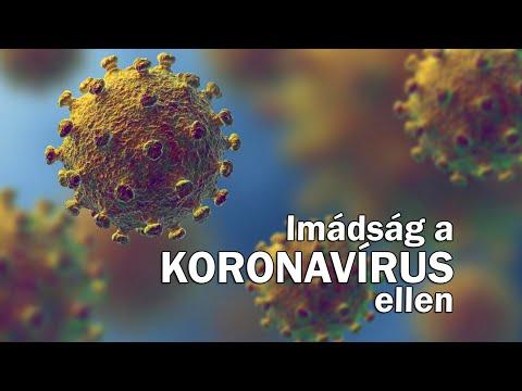 Anticorpi anti giardia synévo