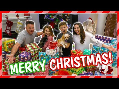 WHAT DID WE GET FOR CHRISTMAS? | GIFT REVEAL | We Are The Davises