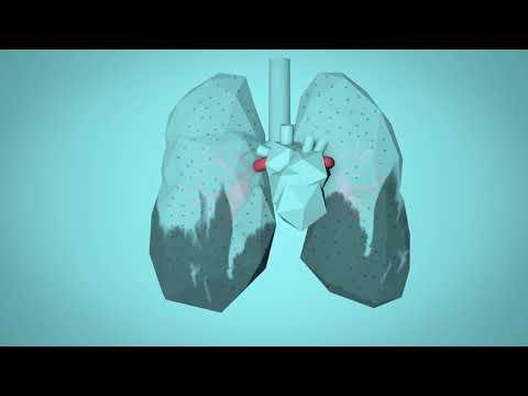 #BreatheLife: Πώς η ατμοσφαιρική ρύπανση επιδρά στο ανθρώπινο σώμα