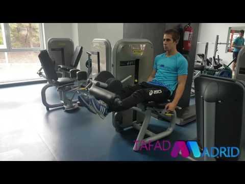 Que permite el movimiento de los músculos de la articulación temporomandibular