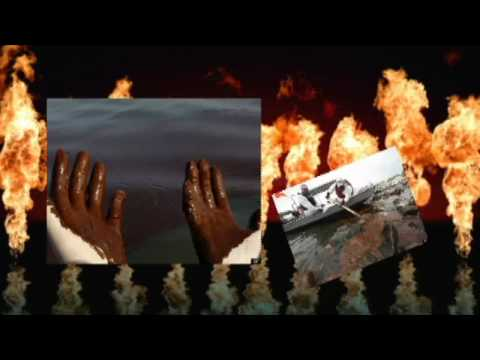 The World Is Burning - Music Video - (HD)