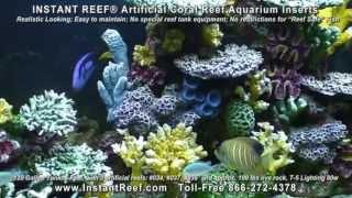 Saltwater Fish Tank Decorations in 120 Gallon Marine Fish Aquarium with Artificial Coral Reef Decors