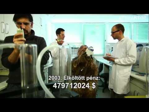 Szarvasmarha szalagféreg tenyésztési ciklusa