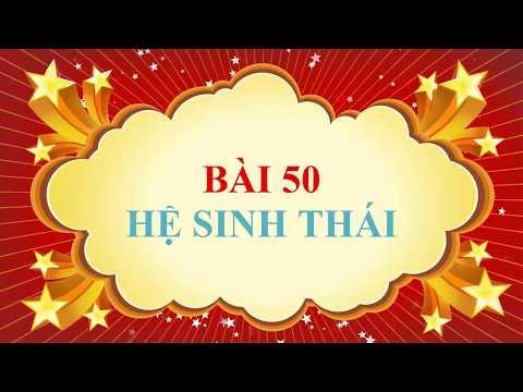 SINH 9. BÀI 50. HỆ SINH THÁI ( VIDEO CLIP)