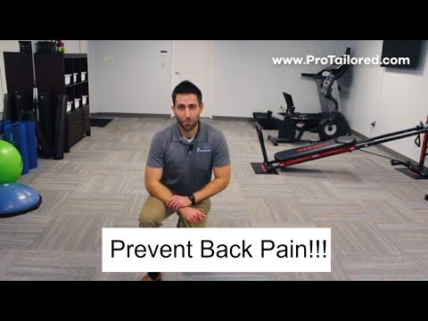 Best Core Exercises For Preventing Low Back Pain!!!