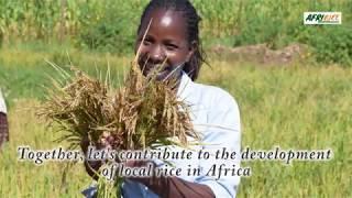 Afririce Agrobusiness