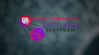 Project Simulation