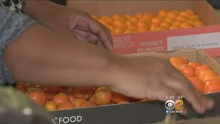 Burbank's Rose Parade Float Momentarily Held Back By Shortage Of Kumquats