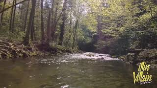 Mellow flight over creek, exploring a new spot through my FPV goggles. ????