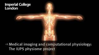 Medical imaging and computational physiology: The IUPS physiome project
