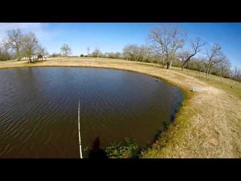 Texas pond bass fishing (GoPro hero 3+)