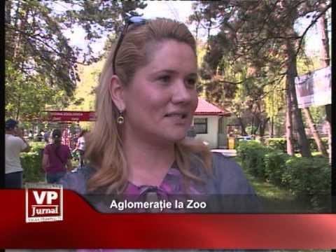 Aglomerație la Zoo