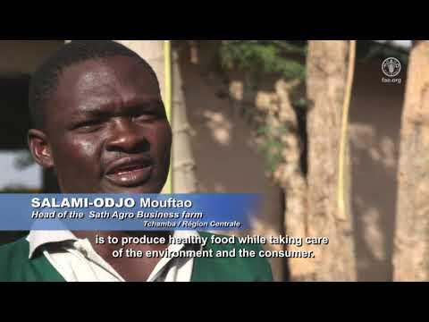 Togo- L'agroécologie, le choix d'une agriculture durable Togo- L'agroécologie, le choix d'une agriculture durable