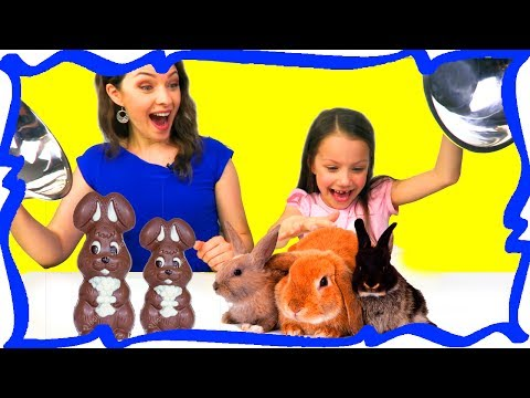 ОБЫЧНАЯ ЕДА против ШОКОЛАДА Челлендж Real Food VS Chocolate Food Challenge /// Вики Шоу